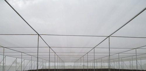 White Shade Net